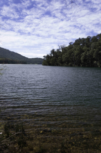 lake william hovell map Lake William Hovell Goulburn Murray Water lake william hovell map